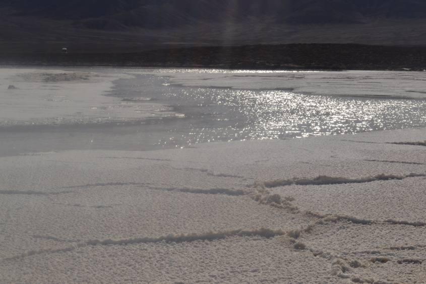 Le lagune salata (Lagunas Escondidas) nel deserto di Atacama in Cile