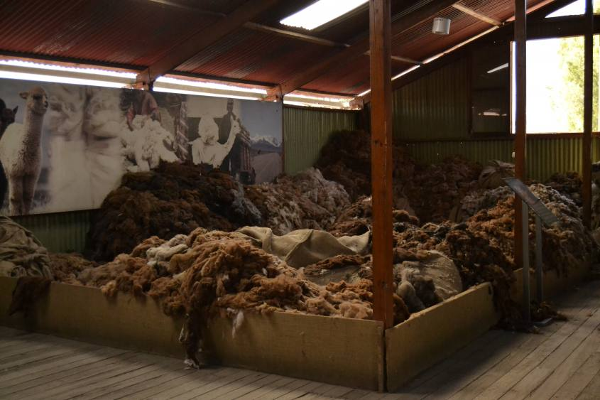 Matasse di lana di alpaca a Mundo Alpaca ad Arequipa