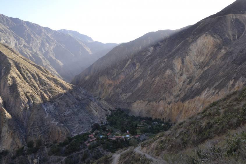 Alloggio oasi verde al termine del primo giorno di trekking all'interno del Canyon del Colca