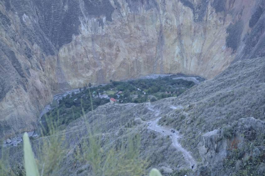 Vista del Canyon del Colca e dell'oasi dalla salita del secondo giorno di trekking