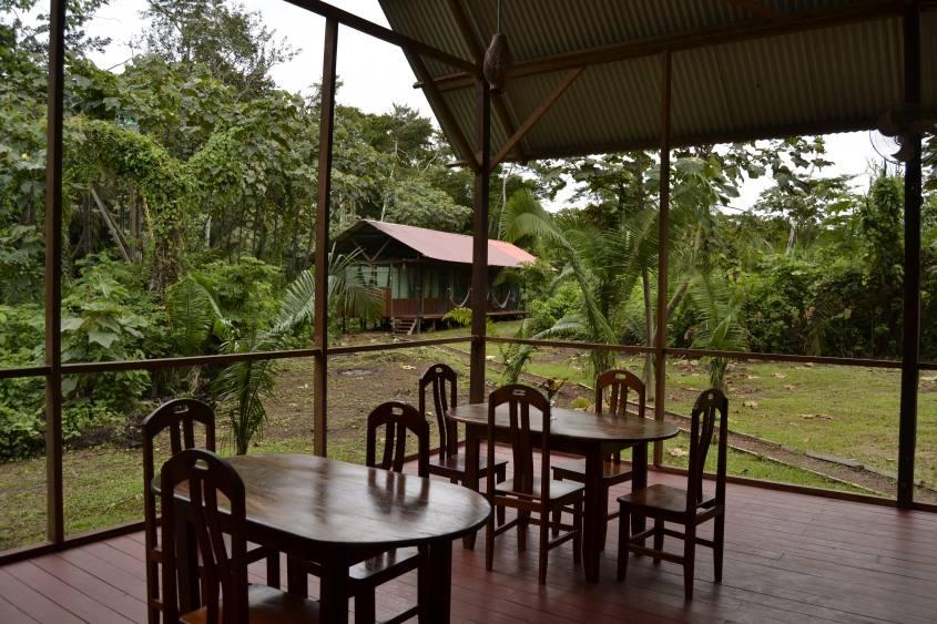 Tarantula Eco Hostel all'interno della Foresta Amazzonica di Puerto Maldonado in Perù