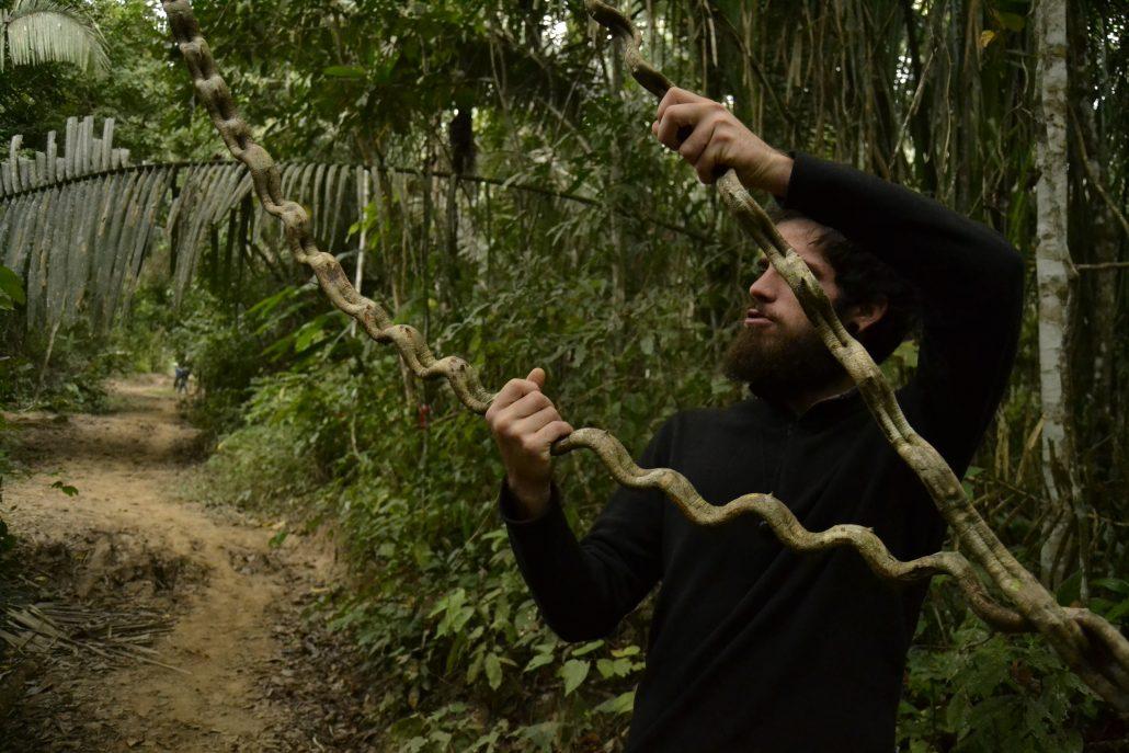 Strane liane nella Riserva Tambopata