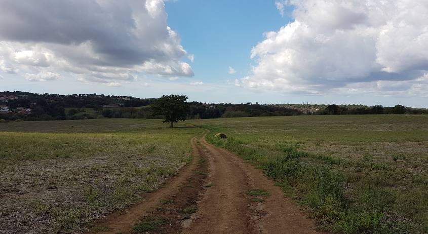 Via Francigena nel Parco di Veio
