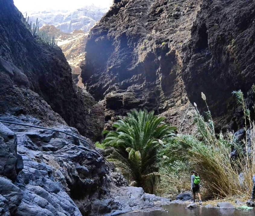 Il trekking di Masca, il migliore di Tenerife alle Canarie