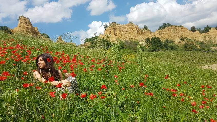 Balze del Valdarno e papaveri a Castelfranco di Sopra