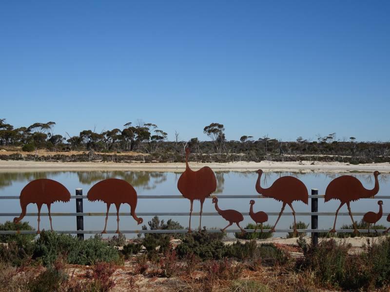 Il Lago Magico di Wave Rock contornato da Emù