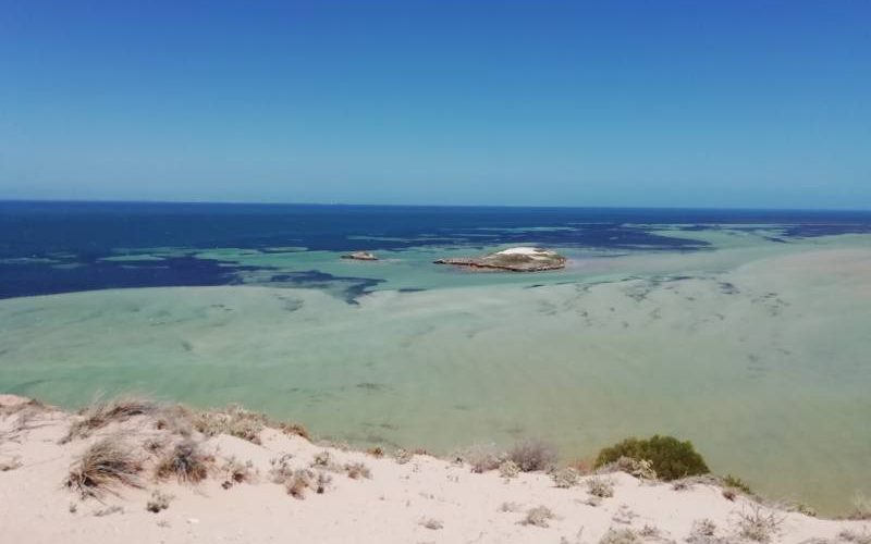 Punto panoramico Eagle Bluff Lookout dentro Shark Bay in Western Australia