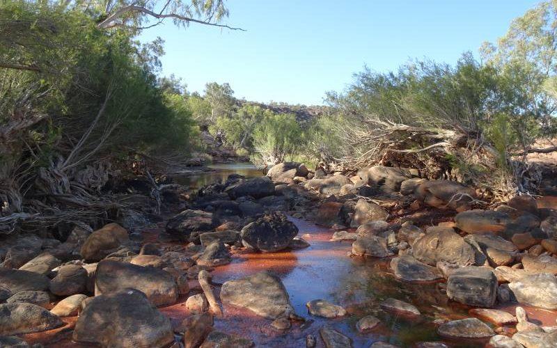 Percorso River Trail, dove è possibile fare il bagno nel Murchison River