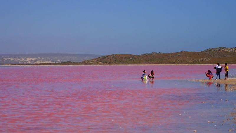 Asiatici che si fanno foto dentro il Pink Lake (Hutt Lagoon), il lago rosa del Western Australia