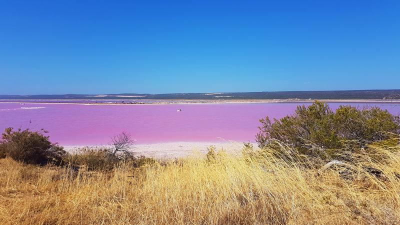 Vista dal Pink Lake Lookout dell'Hutt Lagoon, il lago rosa di Port Gregory in Western Australia