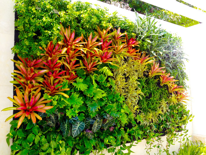 Vertical Wall Garden – Benefits