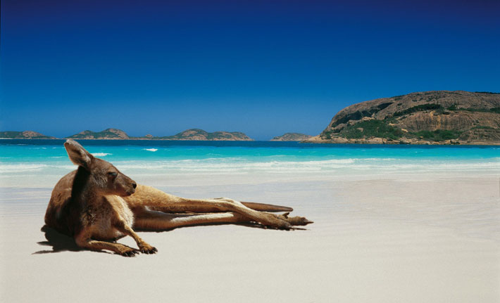 Top 15 Reasons To Visit Australia