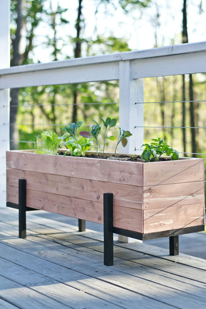 Build And Grow A Salad Garden On Your Balcony