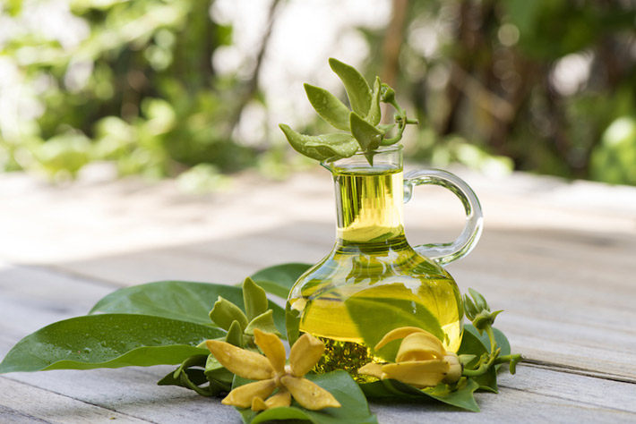 Boosts Heart Health, Moods And Energy – Ylang Ylang Essential Oils