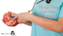 Things That Can Help You Take A Pass On Kidney Stones