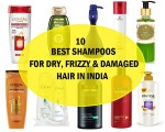 10 Top Best Shampoos for Dry and Damaged Frizzy Hair in India