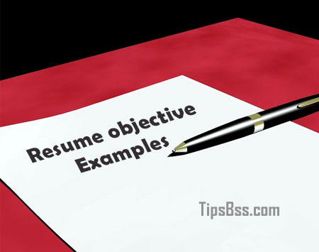 Resume objective examples   Tips Tricks   Tutorial Resume objective examples
