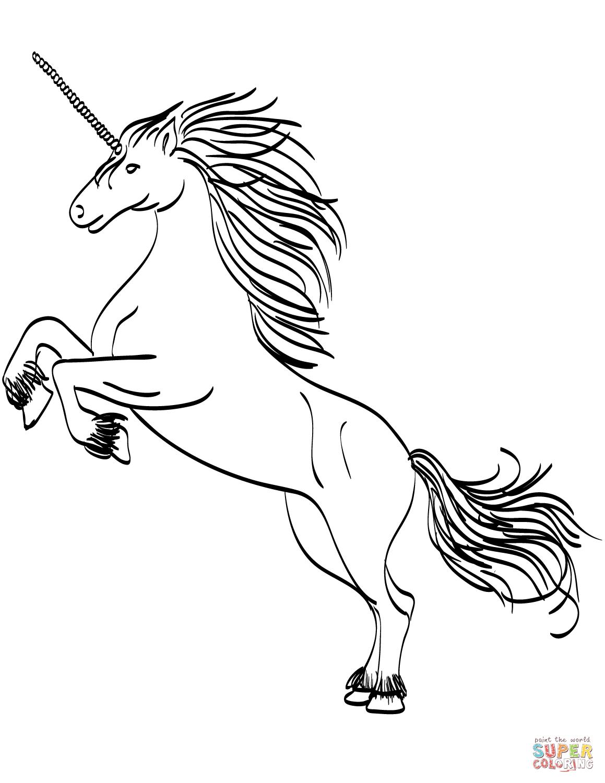 Fiesta De Unicornios Con Bajo Presupuesto