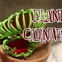 Como hacer una planta carnívora