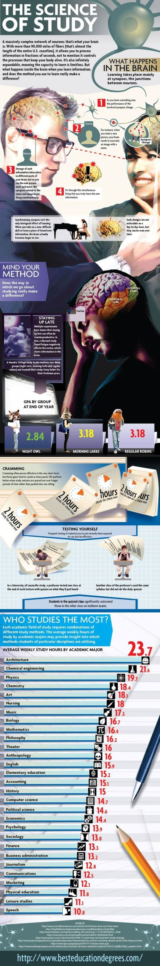 infographic the science of study