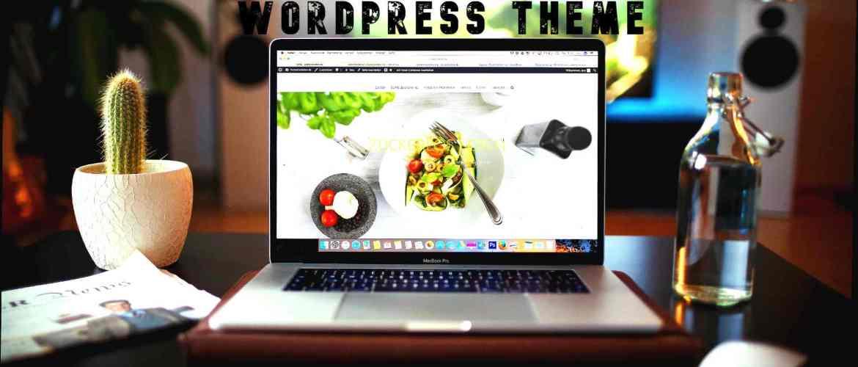 Premium WordPress Theme Free Download in 2020
