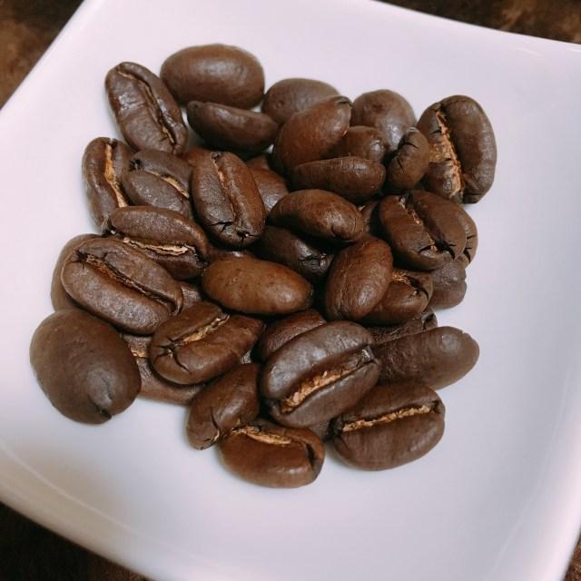 トラジャ フルシティロースト コーヒー豆の写真