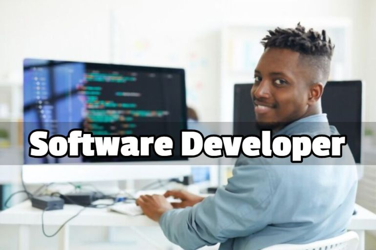 software developer