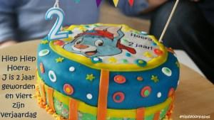 Hiep Hiep Hoera: J is 2 jaar geworden en viert zijn verjaardag