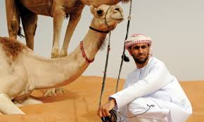 el ain camel and man