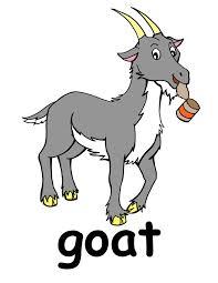 E4l goat