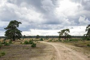 narodni park