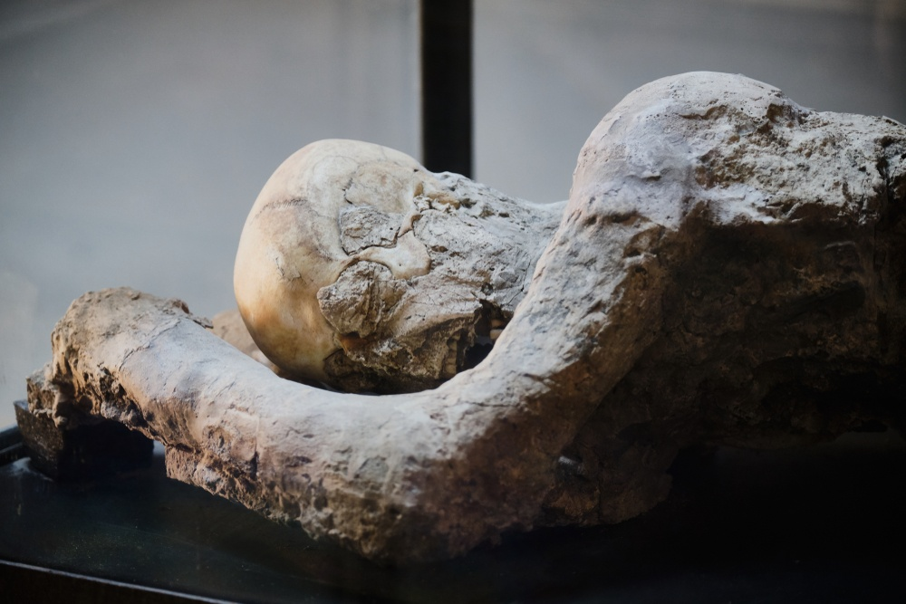Close up shot of on e of the plaster casts of Pompeii's victims.