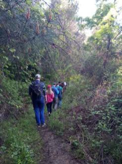 Bride's trail (Stermas-Lunder-Farke) (1)