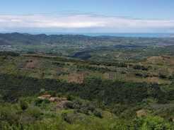 Vineyard way (Peze Helmes-Shesh-Ndroq) (6)
