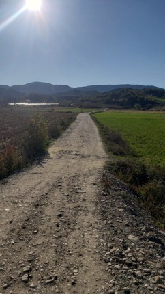 Arbane-Budine-Zhullime-Paper trail (13)