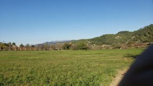 Arbane-Budine-Zhullime-Paper trail (20)