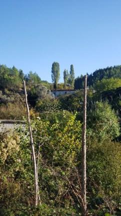Arbane-Budine-Zhullime-Paper trail (33)