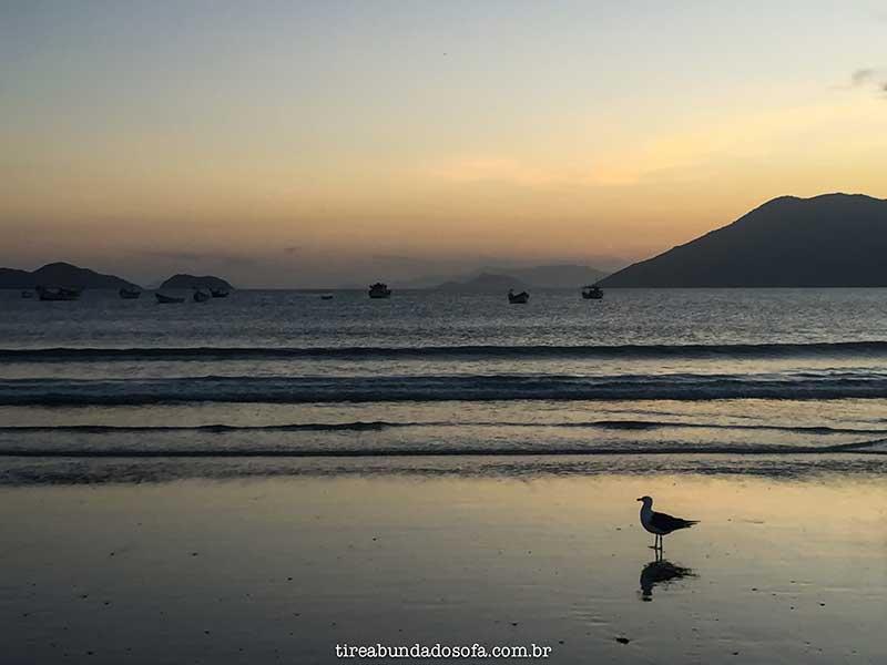 pântano do sul, florianópolis, santa catarina, o que fazer em Florianópolis