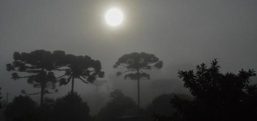 amanhecer, nascer do sol, são bento do sul, araucárias de santa catarina