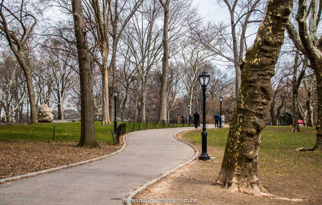 Central Park no inverno, em nova york