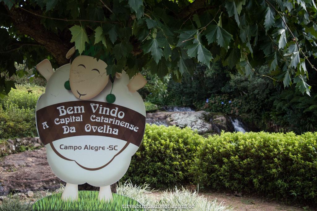 Campo Alegre, a Capital Catarinense da Ovelha