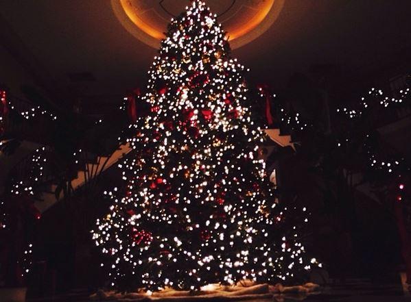 Kardashians Share Photo Of Their Large Christmas Tree