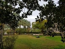 Beautiful gardens in the area that Jesus taught the Sermon on the Mount