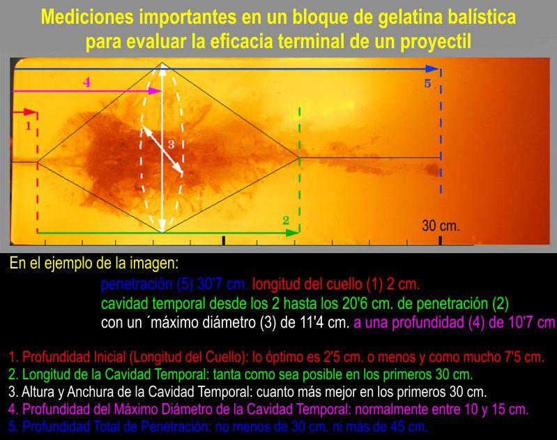 Mediciones importantes en un bloque de gelatina balística para evaluar la eficacia terminal de un proyectil. Dr. Gary K. Roberts.