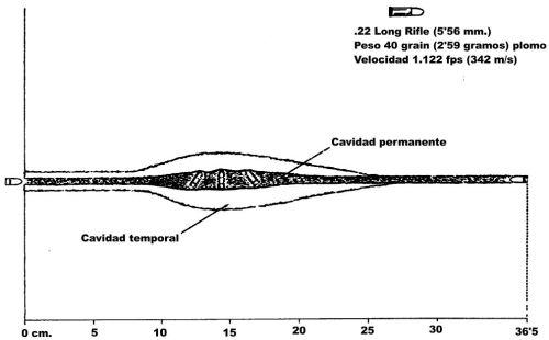 Imagen 5: El proyectil del calibre .22 Long Rifle no se deforma tras impactar sobre tejidos blandos. Se produce un cabeceo significativo tras una profundidad de penetración de unos 8 cm. y el proyectil acaba desplazándose con el culo hacia delante durante la última mitad de su recorrido en los tejidos.