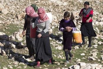 Refugiados yezidi en el monte Sinjar. Foto de Matt Cetti-Roberts