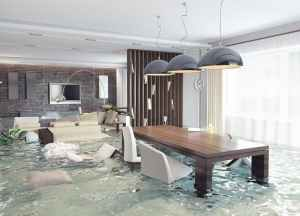 water damage insurance claims tir public adjusters