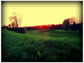 Walking in Lucca: sunset /1