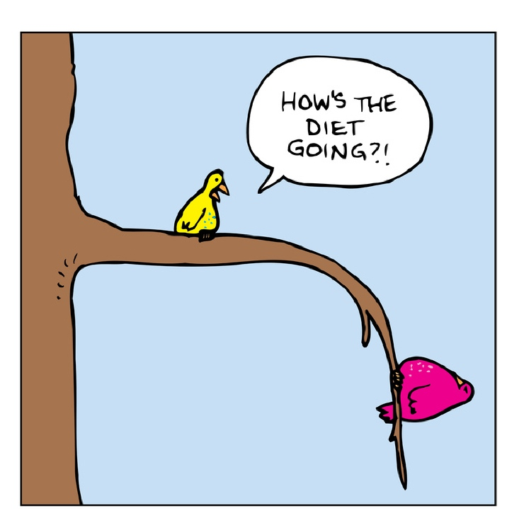 Bird cartoon