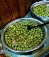 olive 100